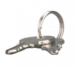 Ersatzschlüssel für kleines silbernes Schloß